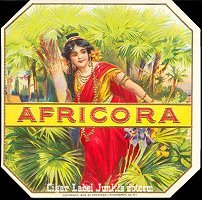 Africora outer cigar box label