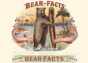 Bear Facts smp