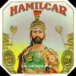 hannibal barca and the carthaginian campaign essay Essay by bryan gambrill, a+, april 1997  hannibal barca was his name and  despite losing the second punic war the carthaginian general was a military.