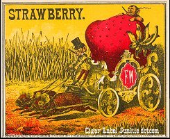 Strawberry outer cigar box label